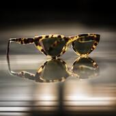 Fendi arriva a Siena in esclusiva da Ottica Ricci.  Non perdere la nuova collezione. #otticaricci #occhiali #occhialidasole #occhialidavista #eyeweaer #thelios #fendi #fendieyewear #luxuryeyewear #otticasiena #sunglasses #sienatuscany